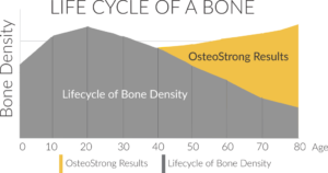 lifecycle of bone density